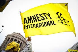 Amnesty 2 3